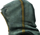 Temple Priest Hood
