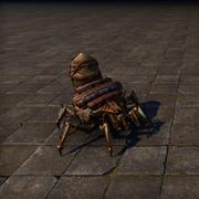 Вьючный паук коробейников