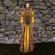 Изящная мантия (Morrowind) жен