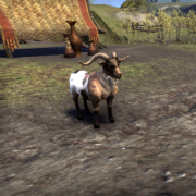 Ротгарский козёл