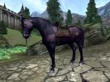 Shadowmere (Oblivion)