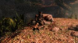 Грот Утопленника Bloated Man's Grotto 018