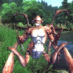 Lądowy Dreugh z gry The Elder Scrolls IV: Oblivion