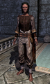 Hammerfell Garb 0007BC19.png