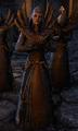 Priestess Harfza.png