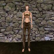 Простые штаны (Morrowind) 14 (жен)