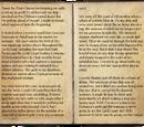 Captain Black Sword's Journal