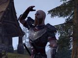 Commander Yjarnn