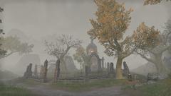 Мрачное поле