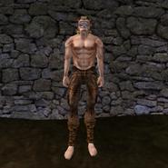 Простые штаны (Morrowind) 10 (муж)