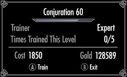 Skyrim Training