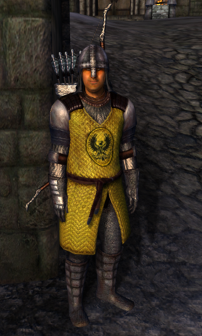 File:TESIV Guard Bruma 1.png