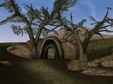 Родовая гробница Венимов (Morrowind)