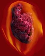 Heart of Lorkhan - Morrowind