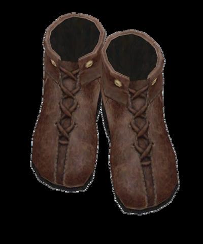 File:Heinrich Shoes.png