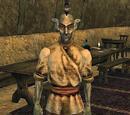 Felvos Droryn