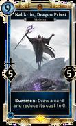 Nahkriin, Dragon Priest DWD