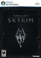 Skyrim copertina PC