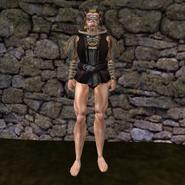 Дорогая рубашка (Morrowind) 7 муж