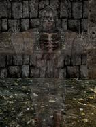 WraithSulSenipulESW1