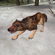 Чумной волк (Bloodmoon)