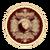 Light Iron Shield Icon