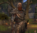 Vigrod Wraithbane