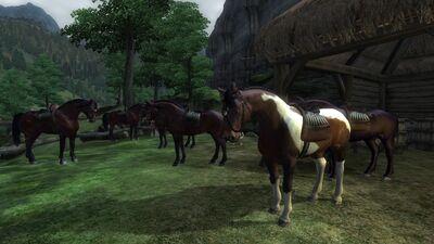 ЛошадиОбливион