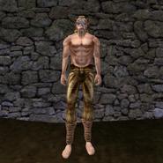 Простые штаны (Morrowind) 5 (муж)