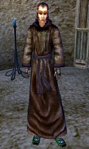 File:Aerin (Morrowind).png