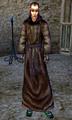 Aerin (Morrowind).png