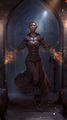 High Elf avatar 1 (Legends).png