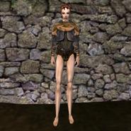 Простая рубашка (Morrowind) 24 (жен)