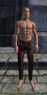 Расшитые кожаные штаны