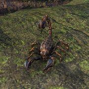 Скорпион-фабрикант