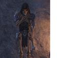 Dark Guardian (Online)