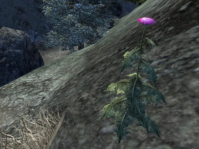 File:Milk Thistle.png
