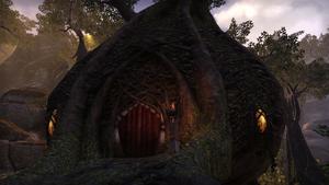 Здание в деревне Сумеречной лозы 6