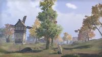 Сиродил (Online) — Окрестности замка Алессия