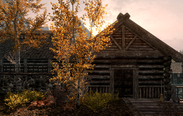 File:Honorhall Orphanage Riften.png
