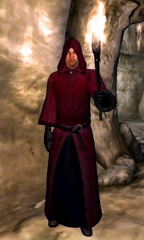 File:Mythic Dawn Guard.png
