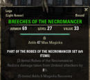 Robes of the Necromancer