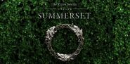 Summerset cover promo