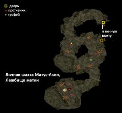 Яичная шахта Матус-Акин. Лежбище матки. План