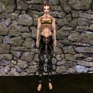 Простые штаны (Morrowind) 12 (жен)