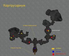 Корпрусариум (план локации)