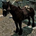 Horse Skyrim.png