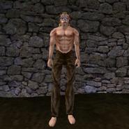 Простые штаны (Morrowind) 14 (муж)