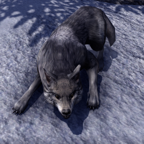 File:ESO Wolf.png