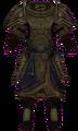 Dwarven Armor (Armor Piece) (Female).png